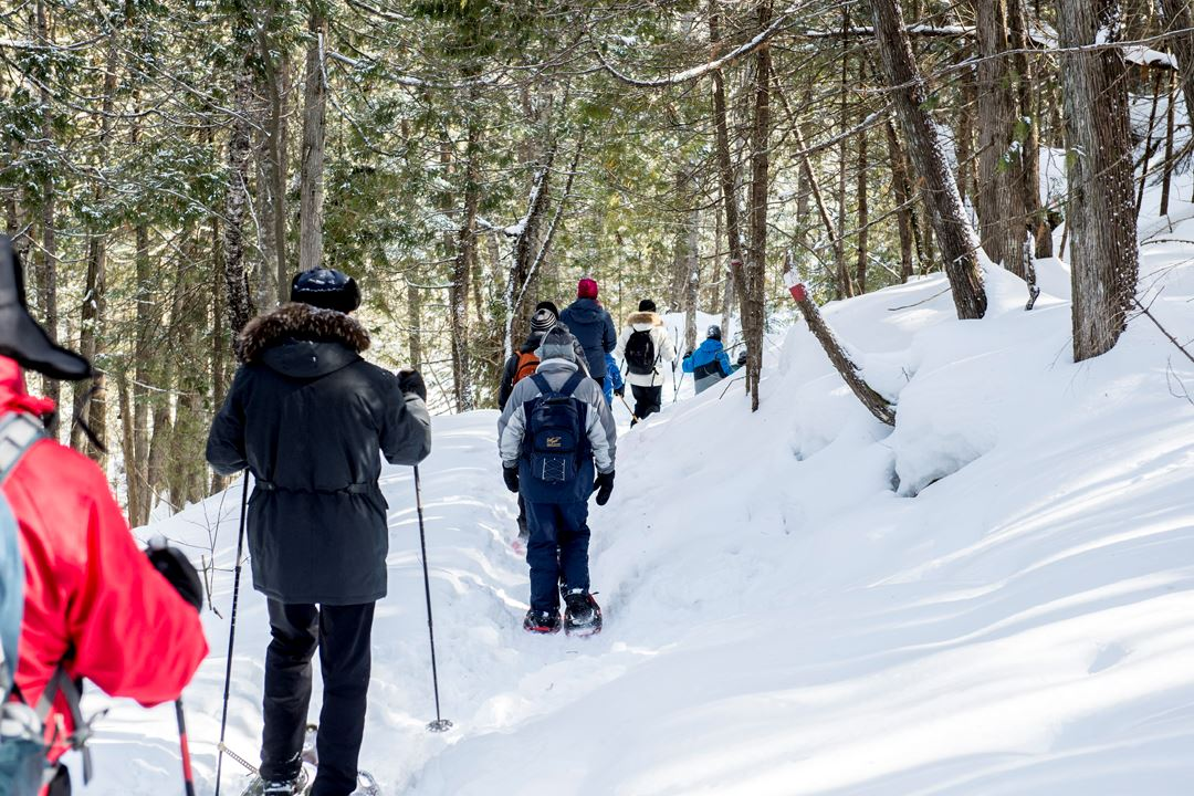 Snowshoeing on the trails of Regional Park of Forêt Ouareau