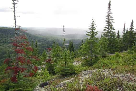 La vue au sommet à la Grande Boucle Zen Nature