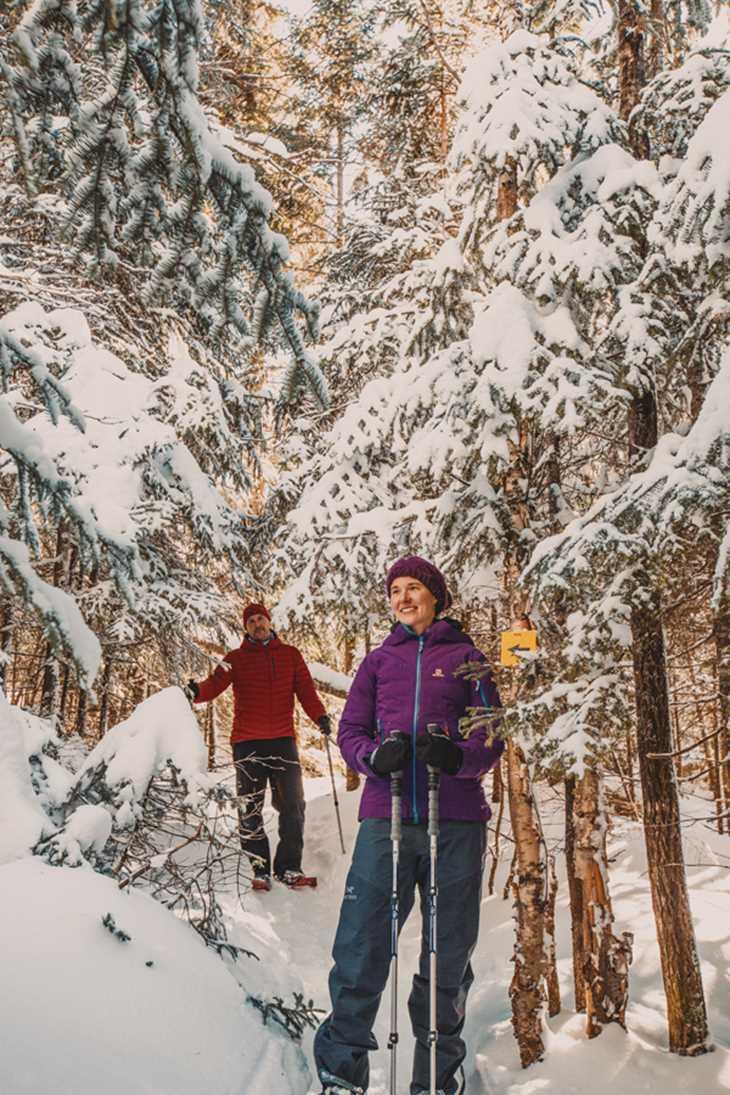 Sentier Pimbina au parc national du Mont-Tremblant