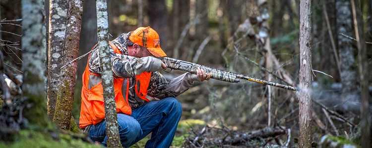 Hunting in quad trails