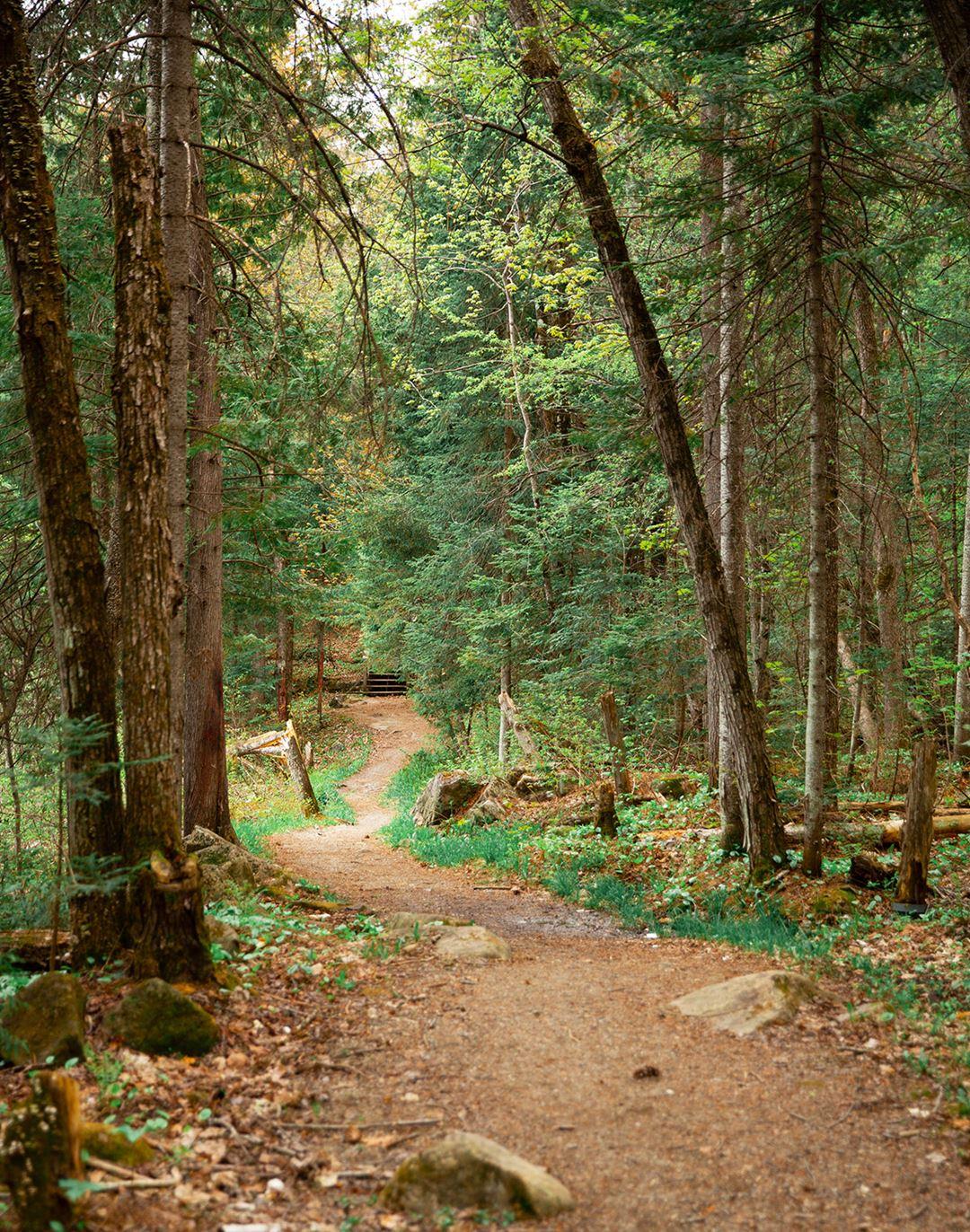A trail in the Park Regional des Chutes-Monte-à-Peine-et-des-Dalles