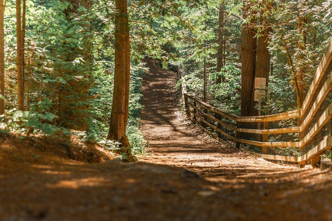 Un sentier dans le parc régional des Chutes-Monte-à-Peine-et-des-Dalles