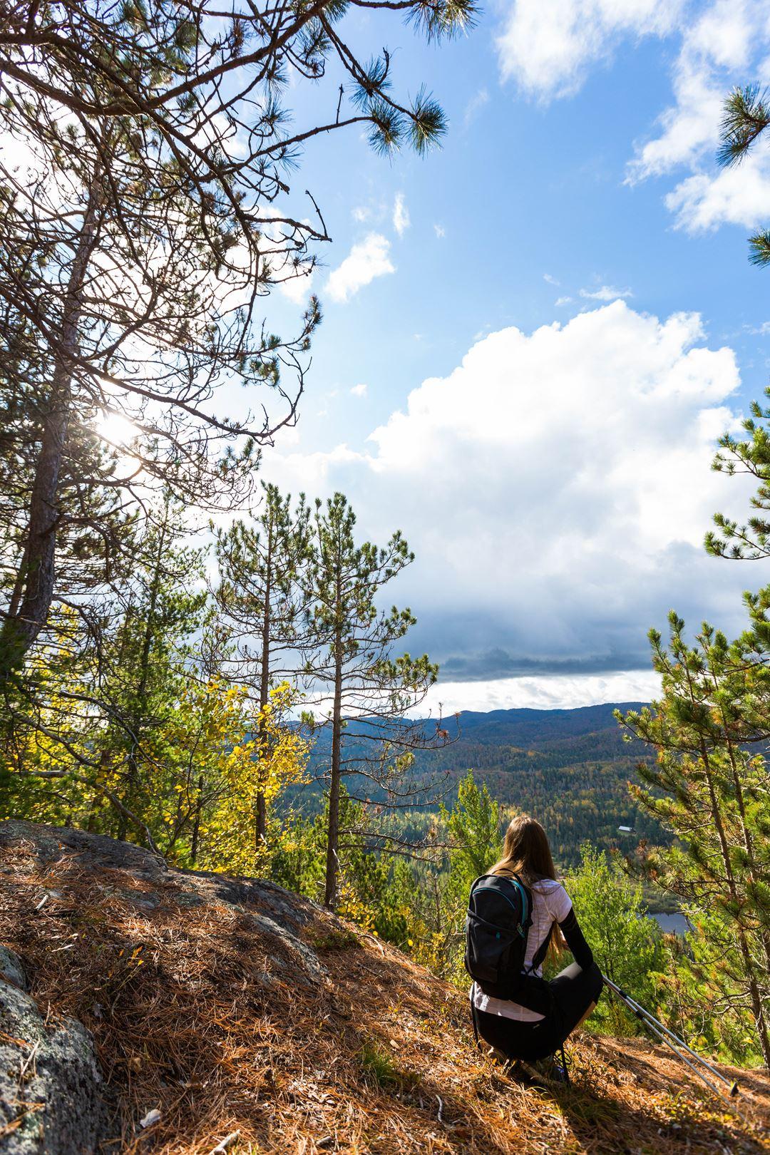 Faire une randonnée au parc régional de la Forêt Ouareau