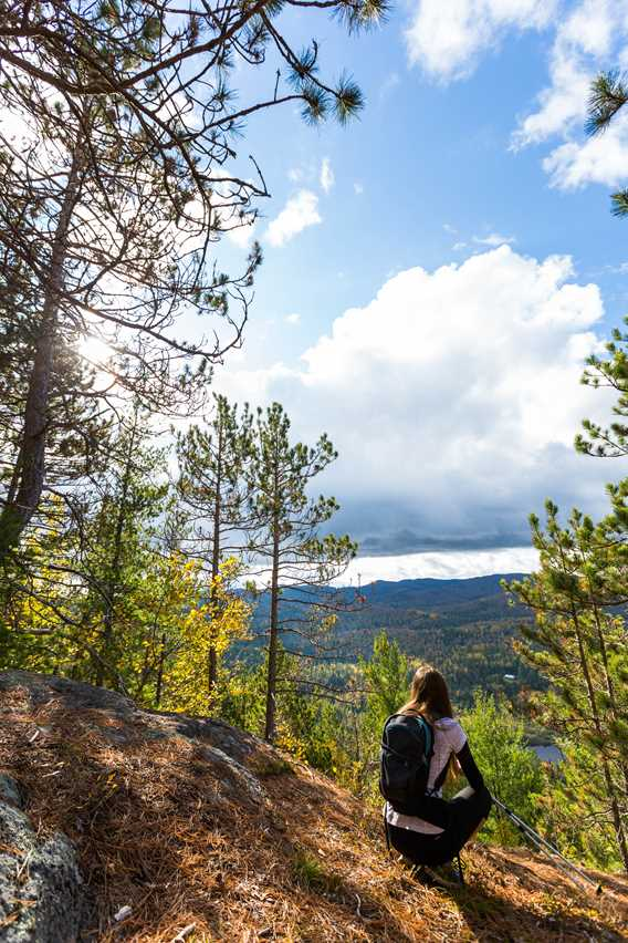 Go for a hike at the Park Regional de la Forêt Ouareau