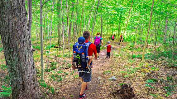 Go for a hike with the family on the trail Montagne Noire