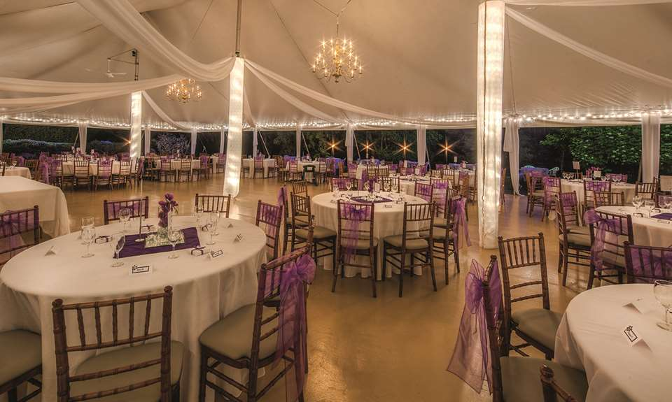Room decorated for a wedding at the Distinction