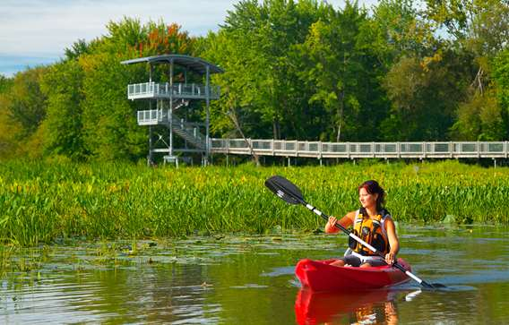 Kayaking on the Thousand Islands River